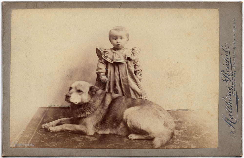 Child with Dog,Photoatelier Reichel,Fuerth,Germany,c.1890