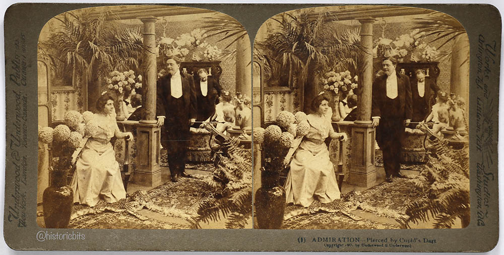Is Marriage a Failure,Stereocard,Underwood&Underwood,1900