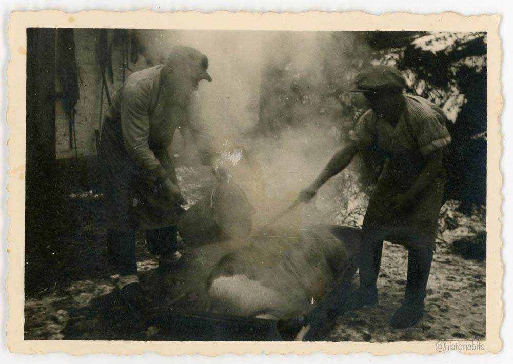 aug2-15-025-1941-1